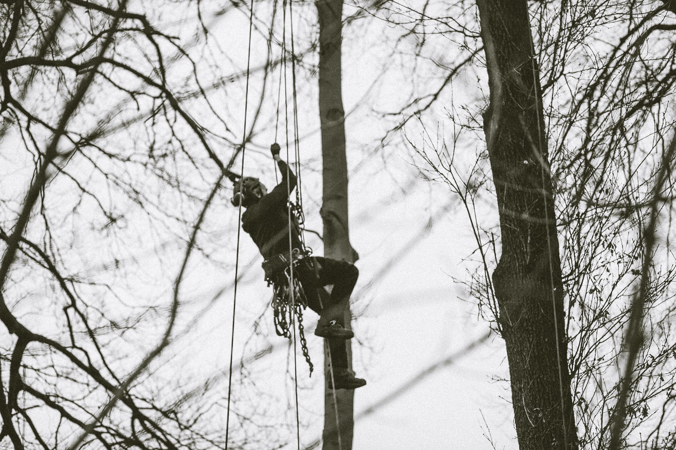 Mit speziellen Seilklemmen gelingt uns der Aufstieg an einem Seil allein durch treten mit den Füßen.
