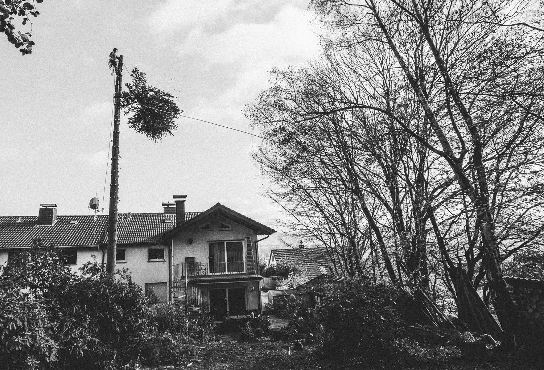 Hier rast die Spitze des Baumes an einer Speedline entlang bis auf den nebenliegenden Hang. Somit verhindern wir das der Unterwuchs Schaden davon trägt. Die ersten Stammstücken fahren dann auch wie an einer Seilbahn hinab auf die Wiese. Somit bleibt das Haus unversehrt.