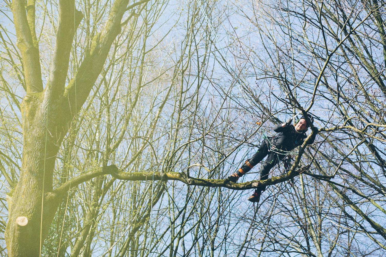 Totholzentnahme bei Bäumen an Grundstücksgrenzen und an öffentlichen Wegen und Straßen dienen der Verkehrssicherungspflicht eines jeden Eigentümers. Wir erledigen den Job für Sie damit Ihr Baumbestand keine Gefahr darstellt.