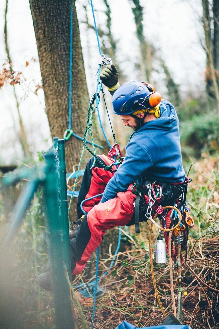 Die Seilklettertechnik – SKT ermöglicht uns Aufstiege in jede Baumkrone.